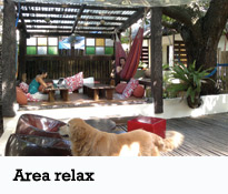 Lazy Dog - Area relax